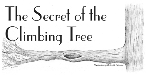 The Secret of the Climbing Tree